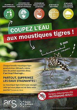 Lire la suite : Attention au moustique tigre !